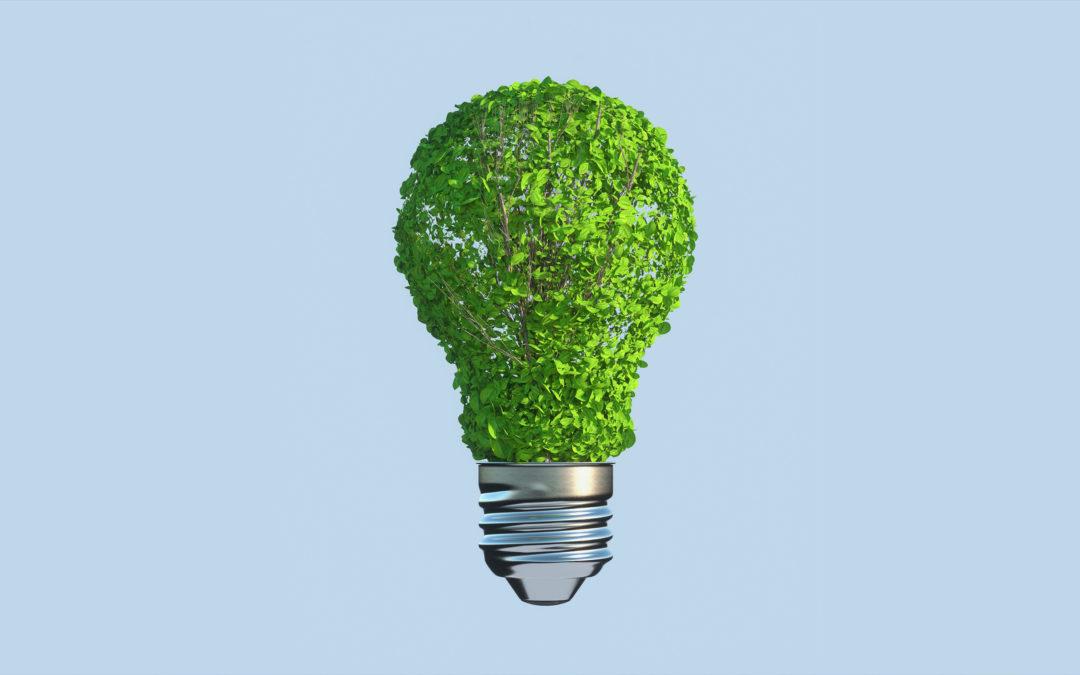 El camino hacia la sostenibilidad económica es eléctrico