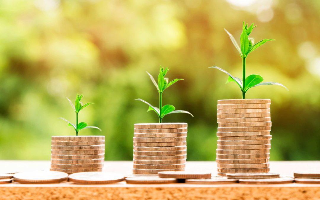FIRMA INVITADA | ¿Quién debe pagar por las renovables?